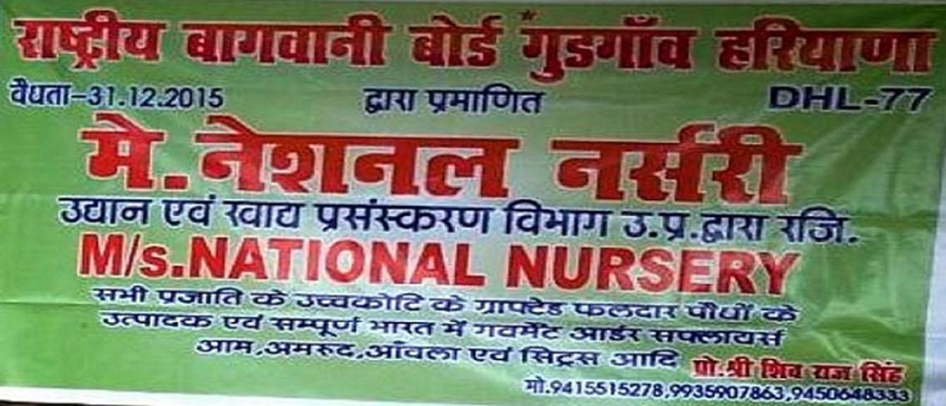 National Nursery :: Home